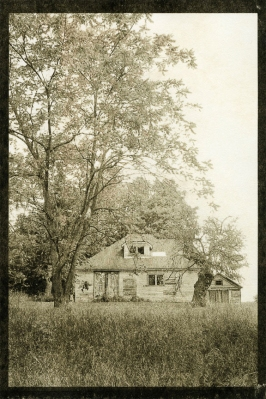 Barns Collection- Old House with Trees, Award winning Palladium print