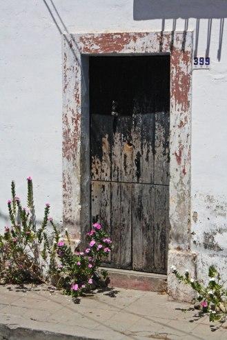 Flowers-by-the-Door-web