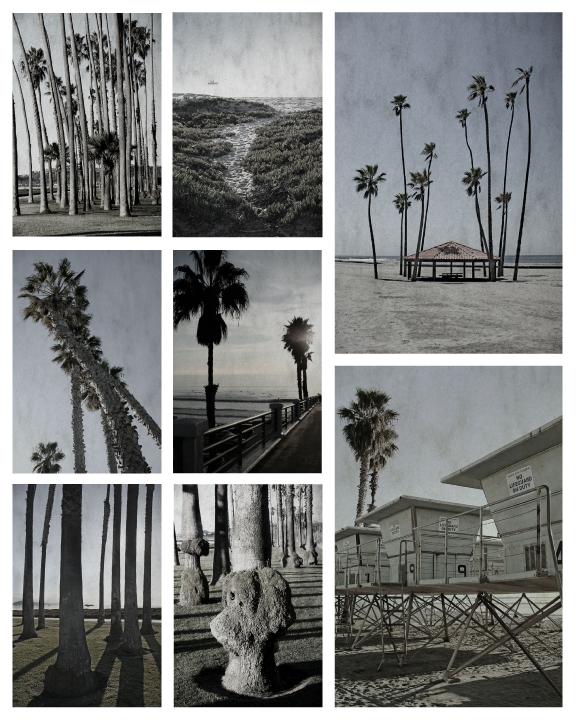 Beach-Compositeweb